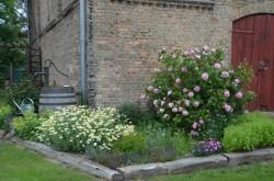 Bandow -  Garten Wedler