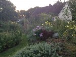 Deyelsdorf - Garten Kluit