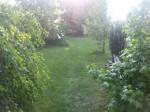 Malliß - Garten Steffen