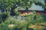 Bastorf - Garten Gallmeier