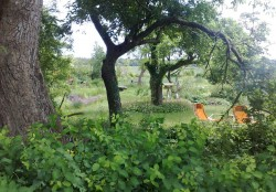 Brudersdorf bei Dargun -  Garten Güttner