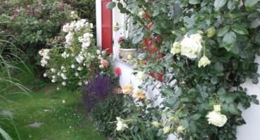 GartenOffen_3k.jpg