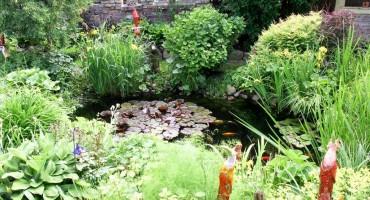 GartenOffen_4k.jpg