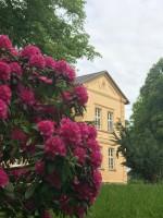 Dettmannsdorf-Kölzow Park und Landhaus