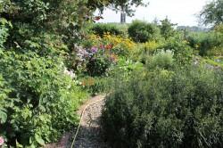 Wendisch Priborn - Garten Meßmann