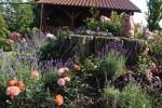 Gielow - Mühle Garten Freitag