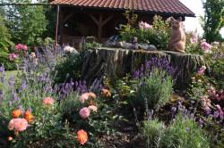 Gielow - Gartenidyll an der Peene Freitag