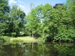 Behren-Lübchen - Gutspark am Gutshaus Bobbin