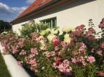 Crivitz- Garten Seidler