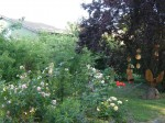 Lindetal OT Plath 22 - Garten Feuerhake