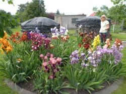 Neuenkirchen - Garten Ulrich