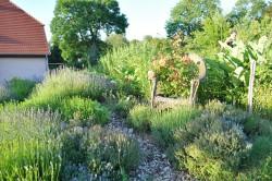 Möllenbeck - Garten Degen