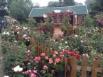 Uckerland-Karlstein - Garten Flemming