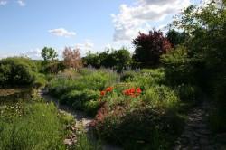 Walkendorf - Garten Gering