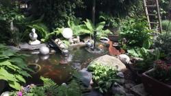 Boizenburg - Garten Gilbrich