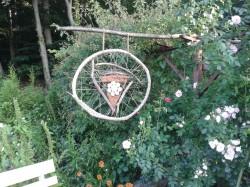 Boizenburg - Garten Lüdemann + Heim