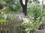 Boddin - Garten Coorßen