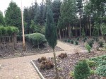 Groß Schwansee - Garten Dunkelmann