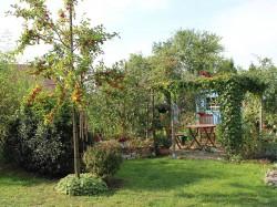 Altenwillershagen - Gartenallerlei Kebbedies
