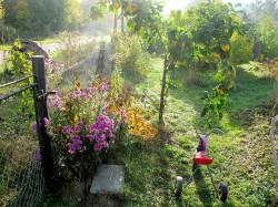 Rothspalk - Garten Familie Reimer