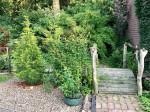 Goldenbow - Garten Schmeil