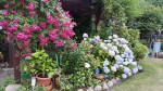Boizenburg - Garten Steusloff