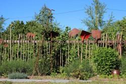 Bad Kleinen OT Losten - Garten Zitzler